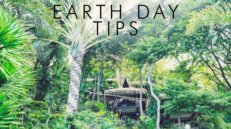 Go Green Tips For Earth Day